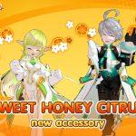 acc-Sweet-Honey-Citrus